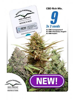 Dutch Passion Seeds CBD Mix Feminized