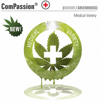 Dutch Passion Seeds ComPassion Feminized