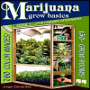 Jorge Cervantes Marijuana Grow Basics
