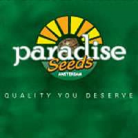 Paradise Seeds Auto Collection #1
