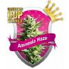 Royal Queen Seeds Amnesia Haze Feminized (PICK N MIX)