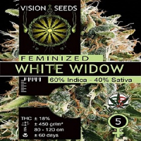 Vision Seeds White Widow Feminised