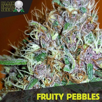 Black Skull Seeds Fruity Pebbles Feminized