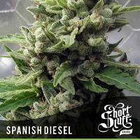 Shortstuff Seeds Auto Spanish Diesel Feminized