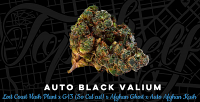 Top Shelf Elite Seeds Auto Black Valium Feminized