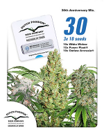 Dutch Passion Seeds 30th Anniversary Mix Feminized