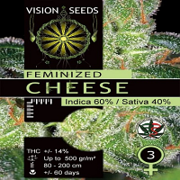 Vision Seeds Gouda's Grass Feminsed