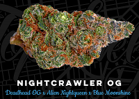 Top Shelf Elite Seeds Nightcrawler O.G. Feminized