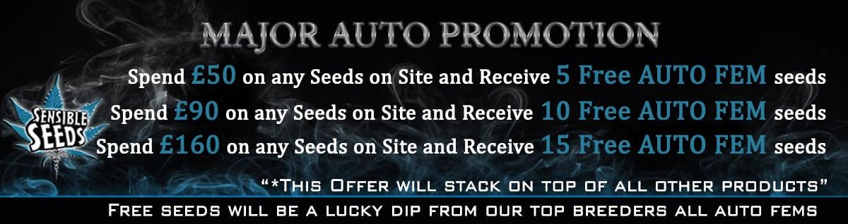 Sensible Seeds Premium Selection