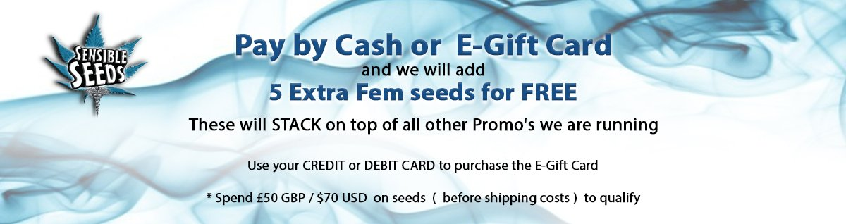 Pay by Cash or E-Gift
