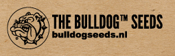 Bulldog seeds Buy Bulldog cannabis seeds online