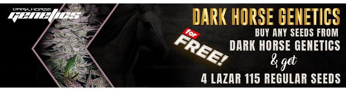 Dark Horse Genetics Seeds