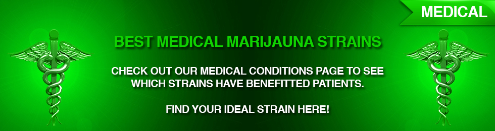 Medical Marijauna - Conditions helped by Marijauna